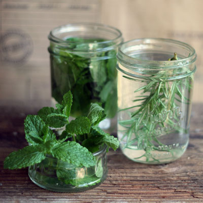 herb-infused-vodka-400x400